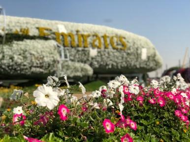 Dubai, Miracle Garden