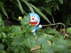 Hiding Doraemon...