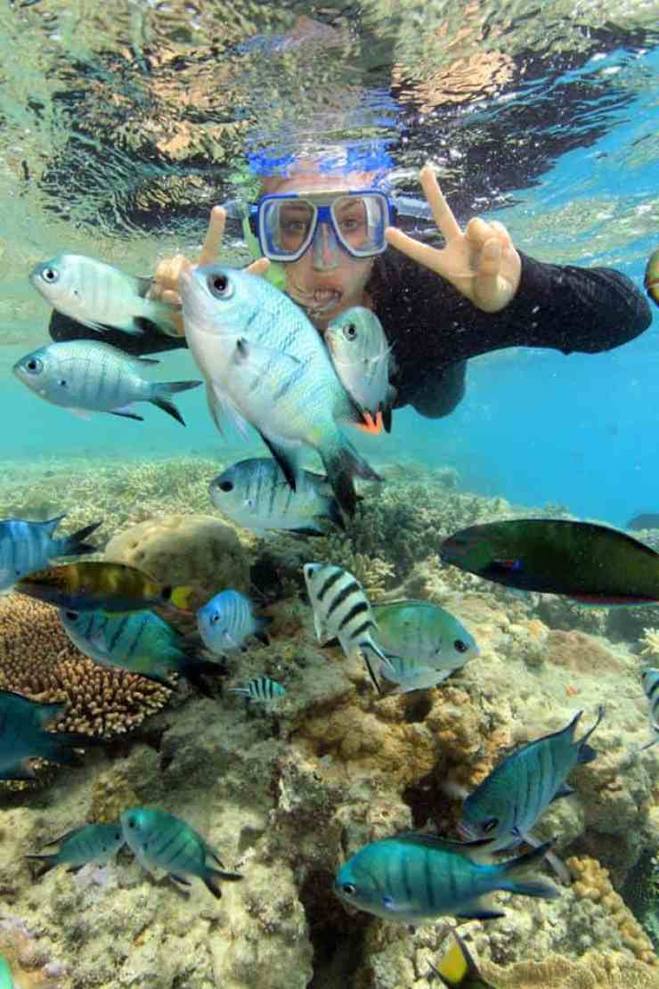 My Once in a Lifetime Experience: Snorkelling on the Great