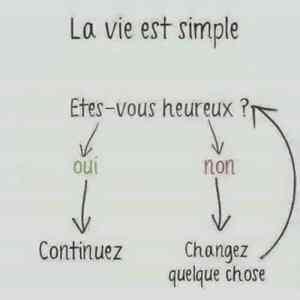 Schéma du choix de vie