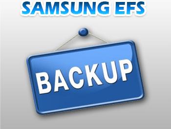 Colección EFS Samung