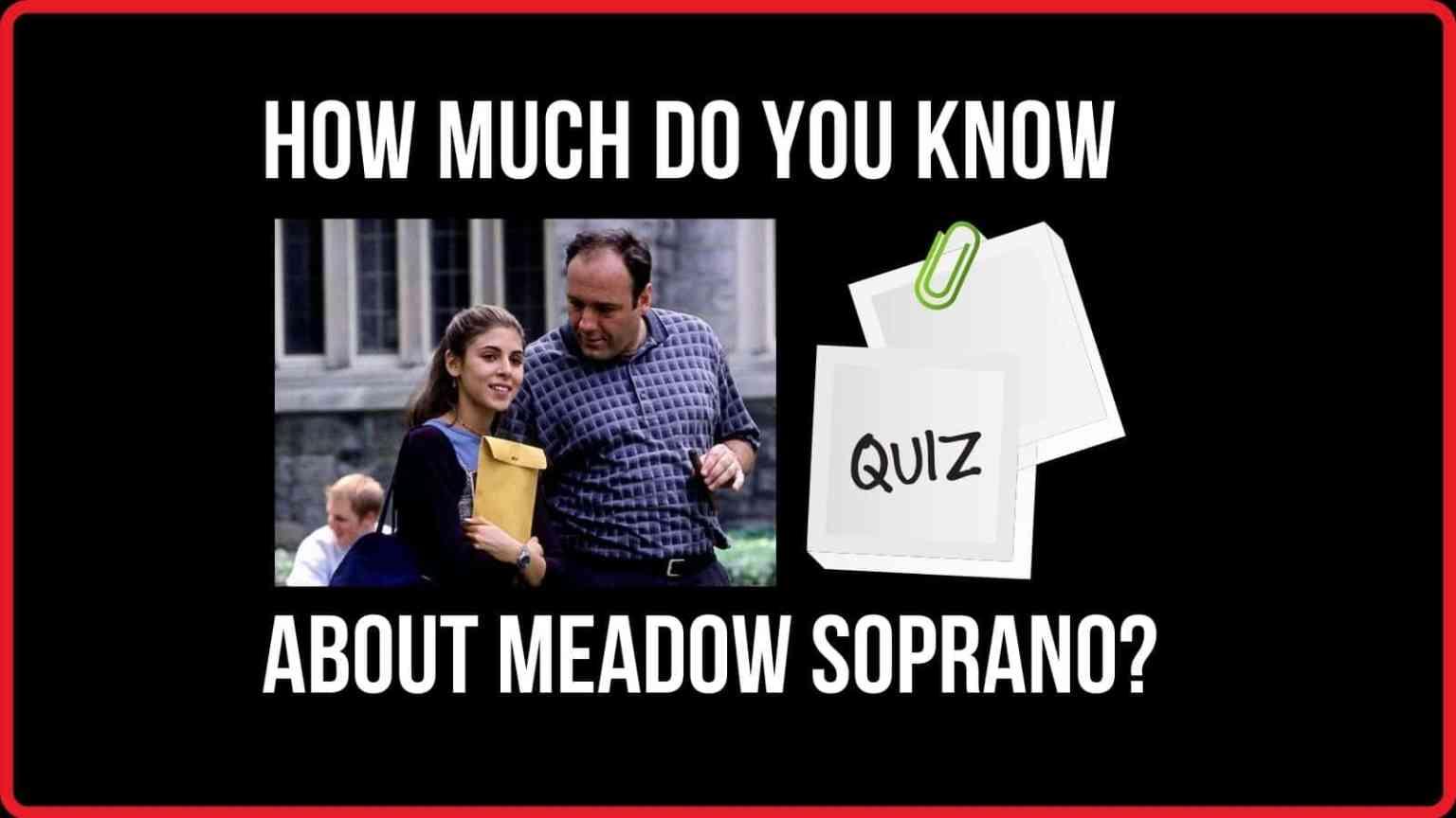 """""""Are You in The Mafia?"""" The Meadow Soprano Quiz"""