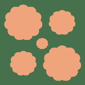SOVISI-AZIENDA-Vendita della lana sopravissana-01