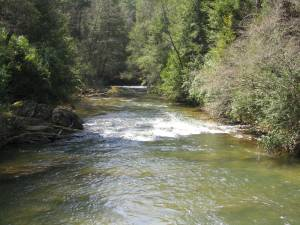"""The Soque River - South of """"The Dip"""" on Hwy. 197"""