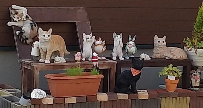 庭の猫ワールド