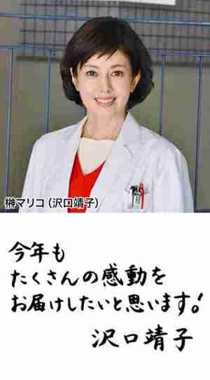 沢口靖子の書道の画像2