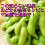 マツコの知らない世界五木のどかの枝豆レシピと激ウマ品種を通販で!