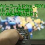 ラグビーワールドカップ2019のアイルランド戦中継のスマホ無料視聴方法は?