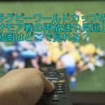 ラグビーワールドカップのサモア戦の再放送や見逃し動画はどこで見れる?