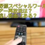 星野源スペシャルワールドツアー再放送は?見逃し動画はある?