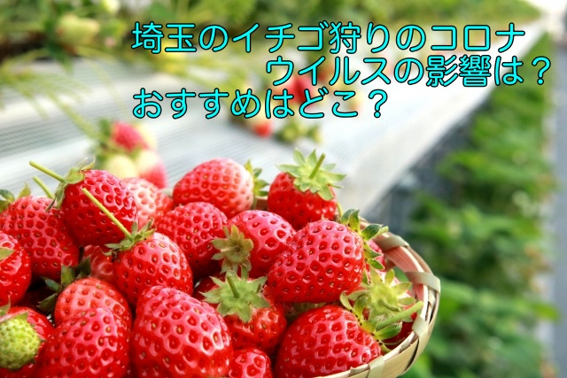 イチゴ狩り コロナウイルス 埼玉