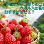 埼玉のイチゴ狩りのコロナウイルスの影響は?おすすめはどこ?