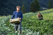 il campo di ortaggi biodinamici dell'azienda agricola Soreie di Ghetta Sebastian e Stephanie