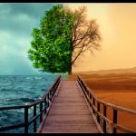 İlahi Adalet (6) : İyi insanların inanmadıkları için ebedi cehenneme gitmesi adil mi?