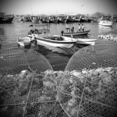 Al Wakrah port is home to a large artisanal fishing fleet - mostly Dhows and small boats. #Qatar has banned trawlers in 1993 after a steep decline in fish and shrimp stocks, which resulted in the fishing industry becoming almost entirely artisanal.