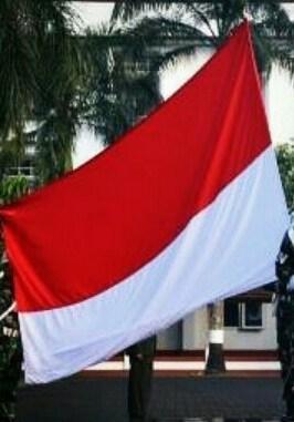 Tidak Benar TNI dan FPI Latihan Ala Militer