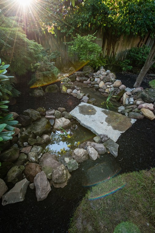 Sorrells Photography- Garden Project