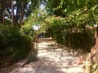 Walkway to kalyani