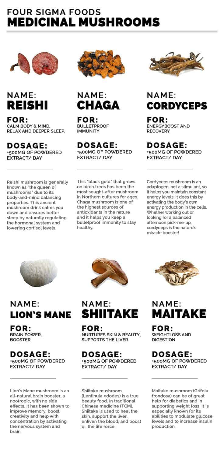 Handy Guide to the Healing Power of Medicinal Mushrooms