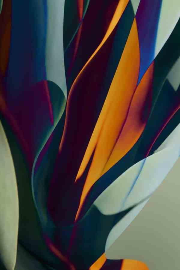 """Cactus Abstraction #3 - Edition 4 of 9"" - Original Artwork by Ed Freeman"