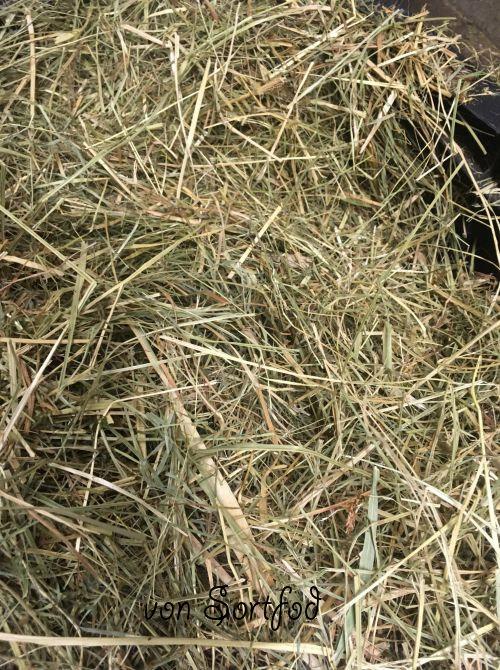 Hø, wraphø, ensilage, halm, frøgræs halm, samt grass