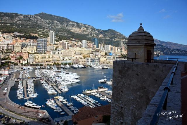 Voeux Monaco