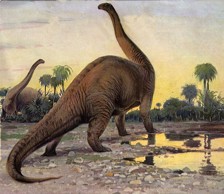 Dinosaur names - brontosaurus
