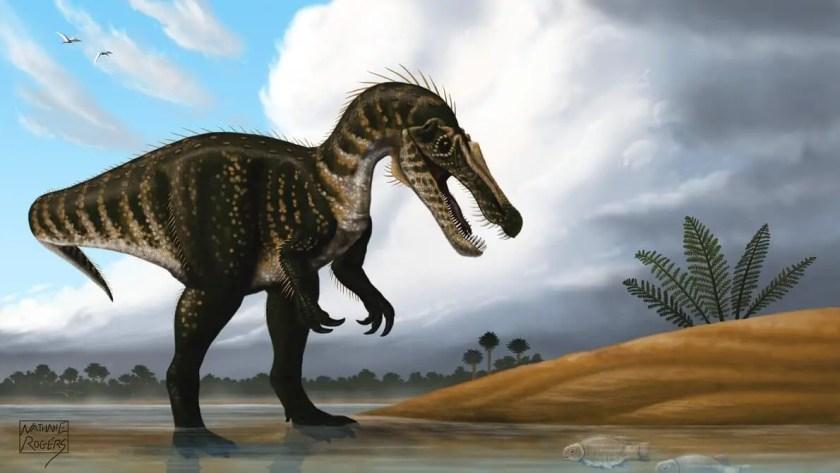 Dinosaur Names - Baryonyx