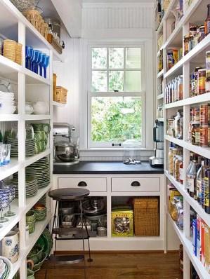 cool-kitchen-pantry-design