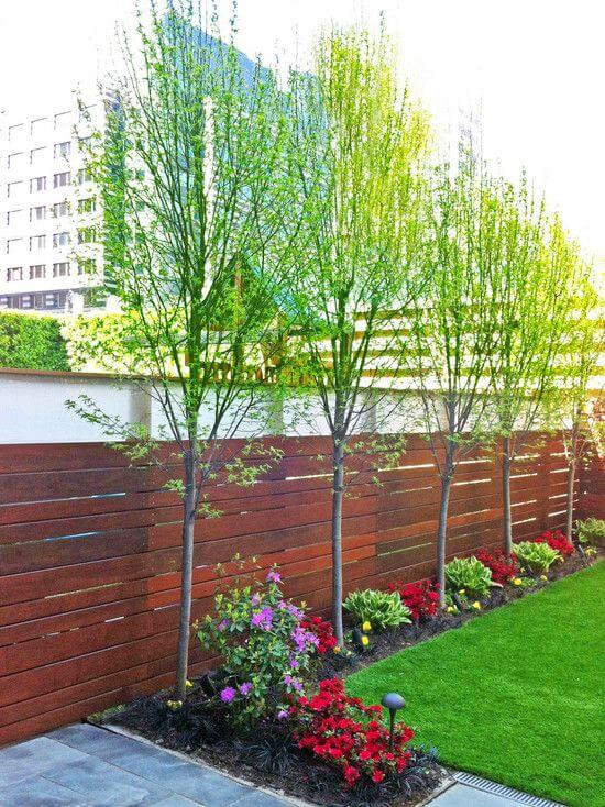 Simple Greenery Looks Idea - small backyard decorating ideas