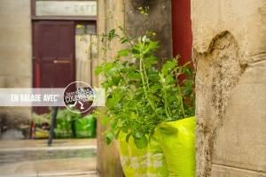 Balade urbaine: L'enVERT de Bordeaux, la consommation responsable à portée de tous @ Bordeaux | Bordeaux | Nouvelle-Aquitaine | France