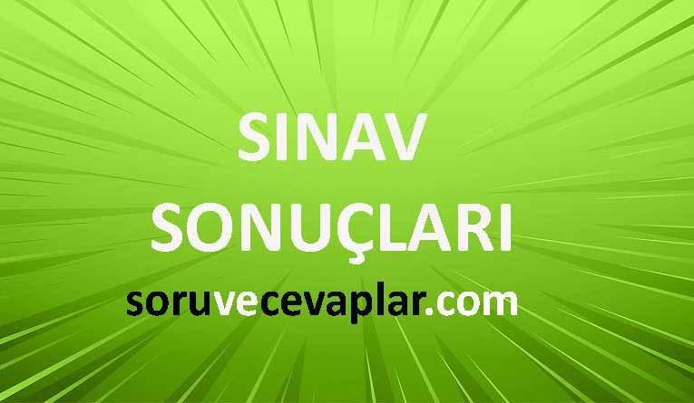 Vip Yayınları Türkiye Geneli Deneme Sınavı 2020 Sonuçları TYT LGS