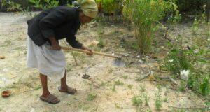 Judite Simoa: Um retrato das mulheres que resistem aos empreendimentos do capital no campo