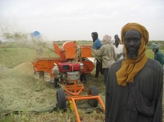 Paysan Sénégal