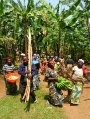 Paysans du Kivu