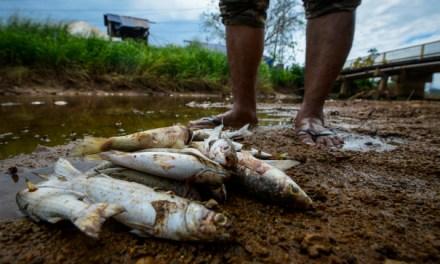 Isu Bauksit : Pencemaran Alam Semakin Berleluasa