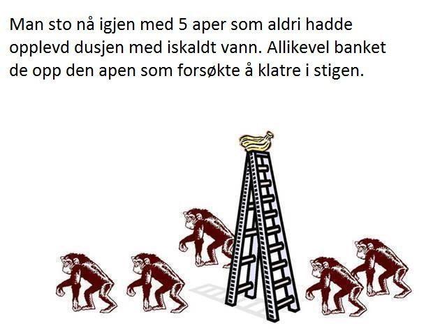 aper7