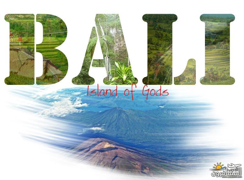 رحلتي الى بالي