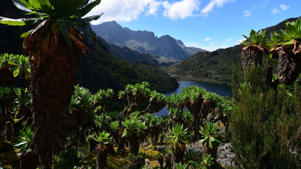 rwenzori_mountains_national_park_1200x675