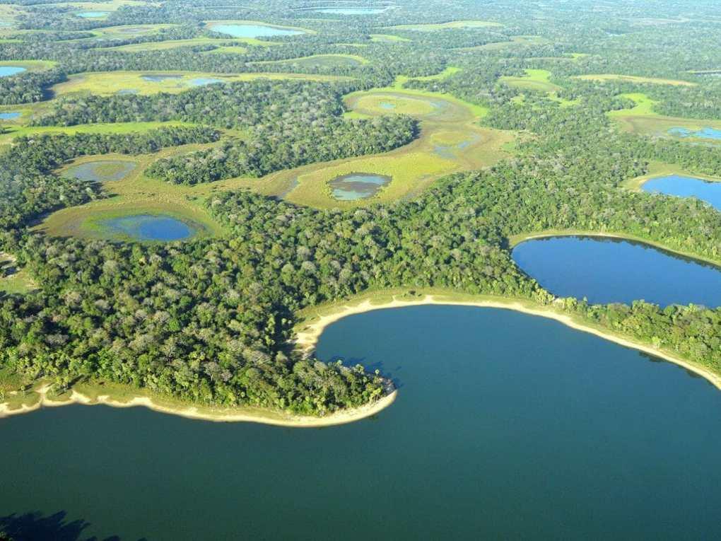 جنوب بانتانال-البرازيل-1024x768-1