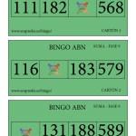 Cartones BINGO ABN: Fase 9 de la SUMA