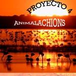 Proyecto 4 de Lengua de 3º EP del CEIP Blas Infante (Sanlúcar de Barrameda)