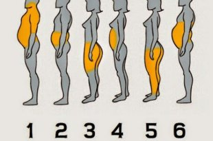 Which Body Part Has The Most Fat: Learn What Kind Of Lifestyle You Have And How To Deal With It!