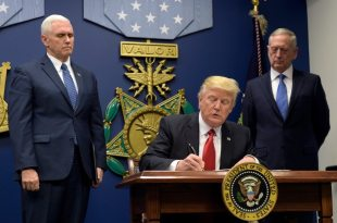 Apple, Facebook, Google Unite Over Trump Immigration Ban
