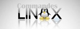Top 15 Commandes Linux que tout Webmaster doit connaitre
