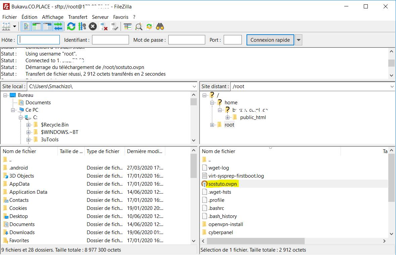 Profil OpenVPN Comment Mettre en Place Un VPN sur son VPS avec OpenVPN