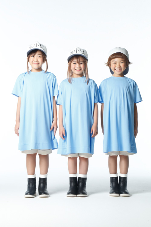Meet Red & White Blood Cells in Cells at Work! Stage Play