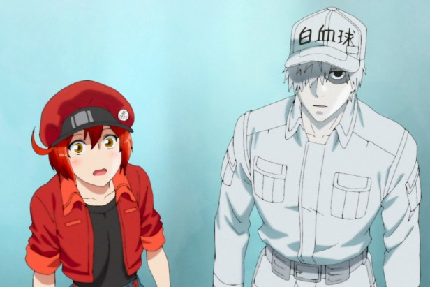 cells at work anime