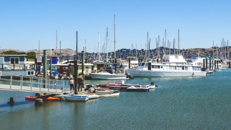 Boats in the harbor in Sausalito