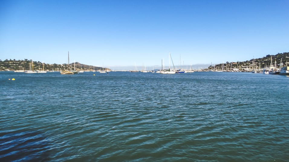 San Francisco Bay and Angel Island